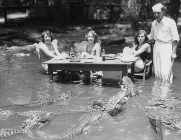 Alligator-Farm-1920s-VII