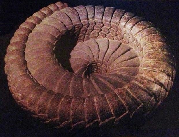 La spirale del serpente - Scultura in pietra XIV - XV secolo, Città del Messico, Museo Nacional de Antropologia