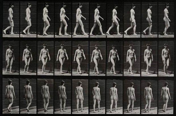 A-woman-walking.-Photogravure-after-Eadweard-Muybridge-1887-CC-BY-NC