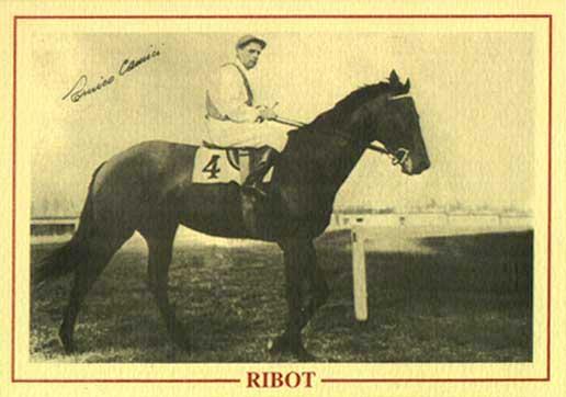 ribot2
