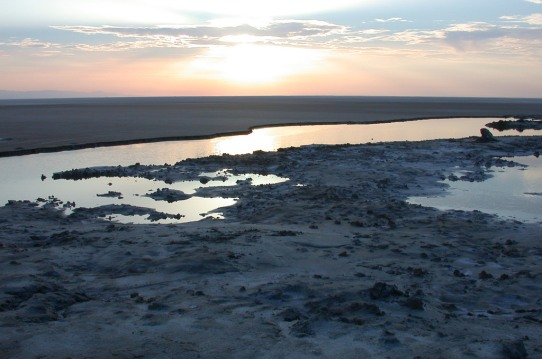 Chott-El-Jerid-Sunrise