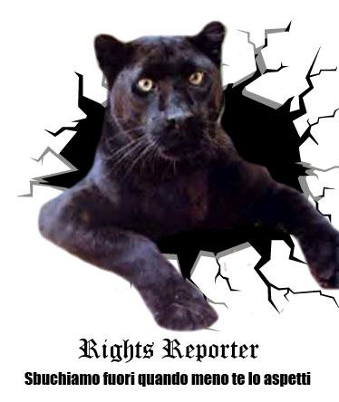 pubblicità-rights-reporter