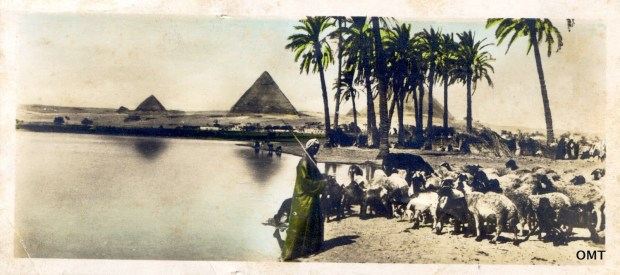 L Scortzis and Co. Landscape with the pyramids at Giza, RPPC, C1915