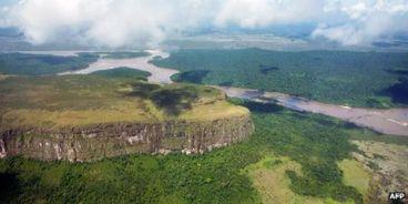 _63220352_venezuela_jungle_g