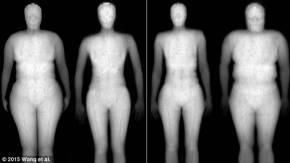corpi-magri-e-grassi-703330