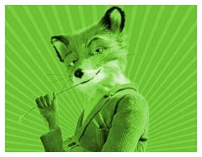volpe-verde