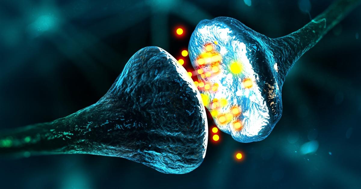 Il M5S deve tornare a considerarsi un organismo vivente e quindi necessitante di un cervello