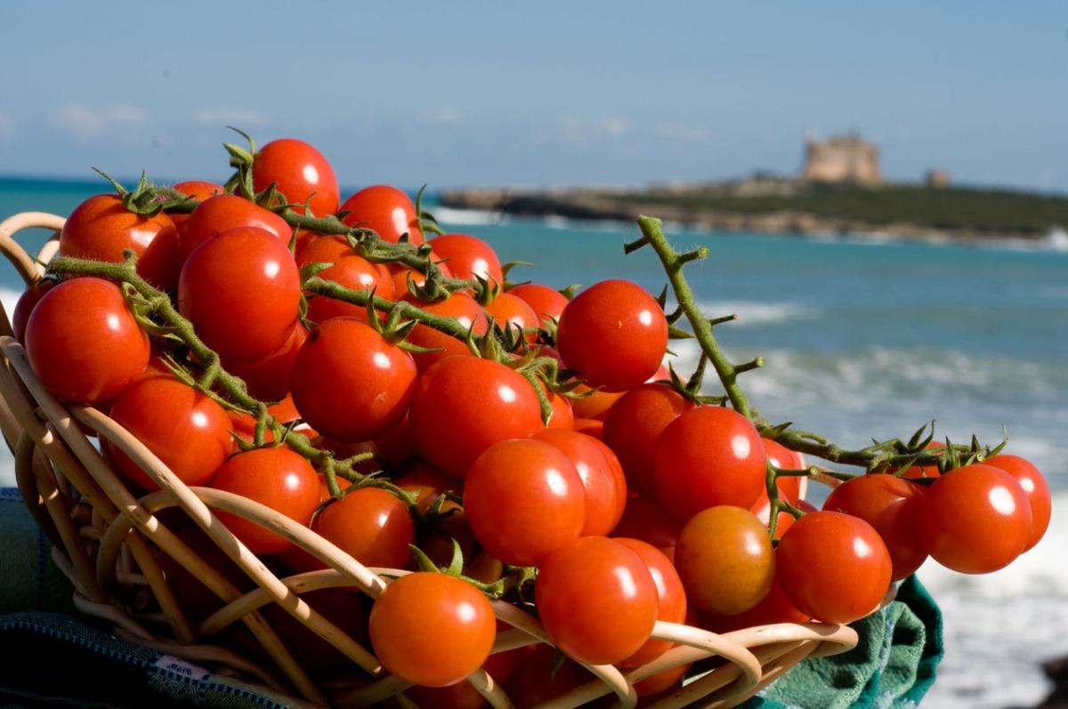 Viva la Repubblica Creola (e profumata) del Bacino Mediterraneo